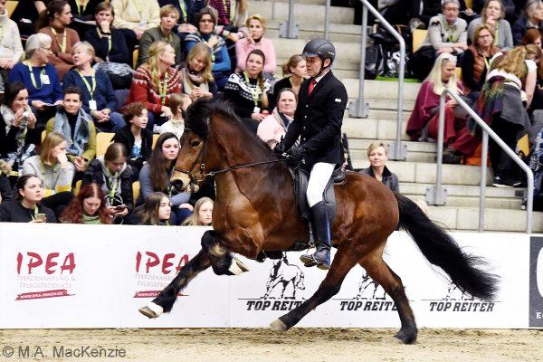 MCK0897 Thór-Steinn and Jóhann 240218 stallion show