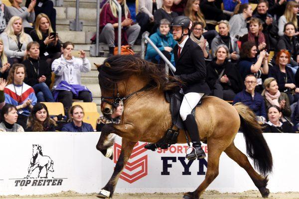 MCK0654 Muni 230219 Stallion show