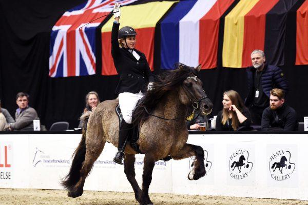 MCK1130 Prúdur 230219 Stallion show
