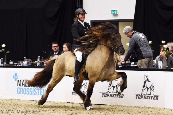 MCK1457 Byr 230219 Stallion show