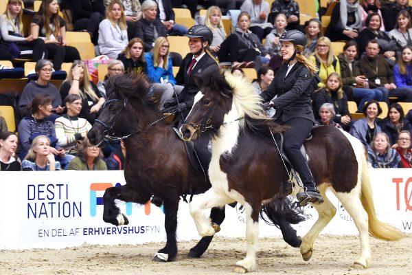 MCK2102 Breeding show Pegasus 230219