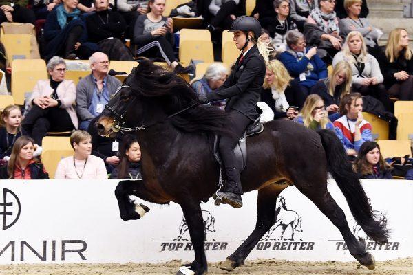 MCK2245 Breeding show Pegasus 230219