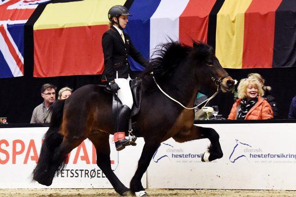 MCK9804 Ódinn von Habichtswald and Frauke Schenzel T2 winner 230219
