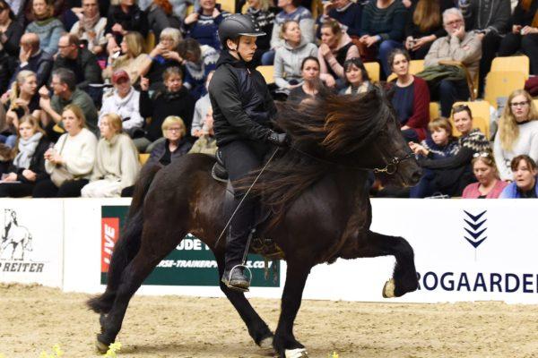 MCK0195 Stallion show 220220