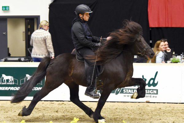 MCK0424 Stallion show 220220