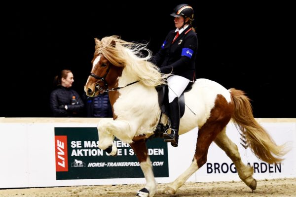 MCK2723 Vördur and Lisa V1 final 220220
