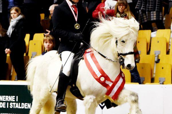 MCK6589 Finnbogi and Jóhann T1 Winner