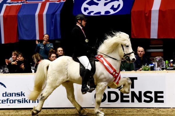 MCK6621 Finnbogi and Jóhann T1 Winner 2202220 King of Tölt