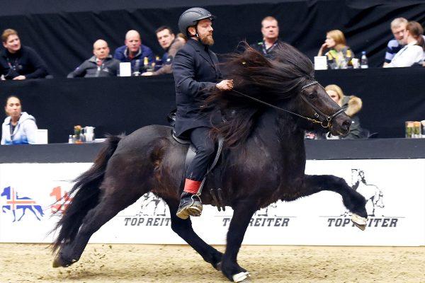 MCK4285 stallion show 110217