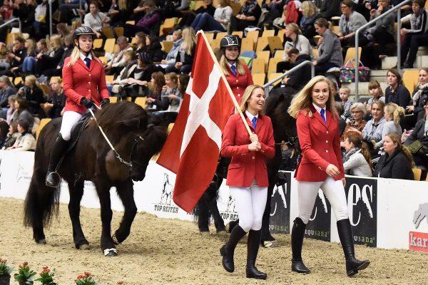 MCK5933 YR Denmark 110217