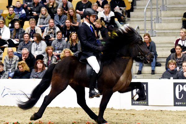 MCK9458 Tjörvi show 110217