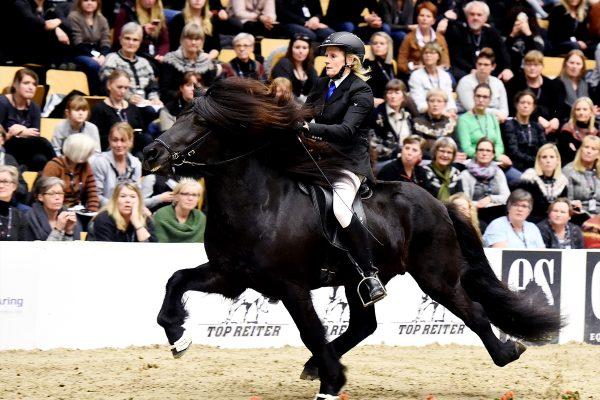 MCK9621 Tjörvi show 110217