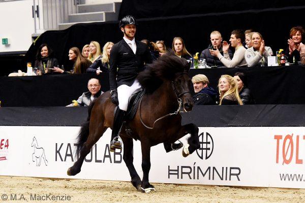 MCK0306 Pistill and Nils 240218 stallion show