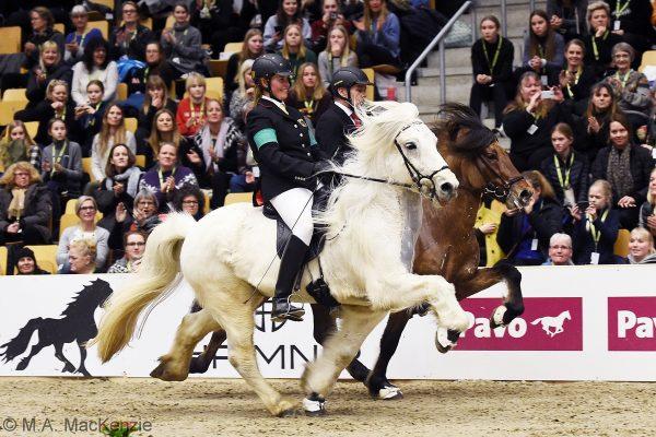 MCK0363 Hnokki and Kjalar T1 final 240218