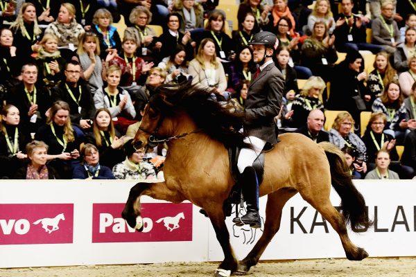 MCK0783 Muni frá Benstrup and Dennis 260218 Anne