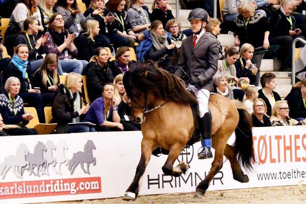 MCK1583 Muni and Dennis 4-gait stallion show 240218