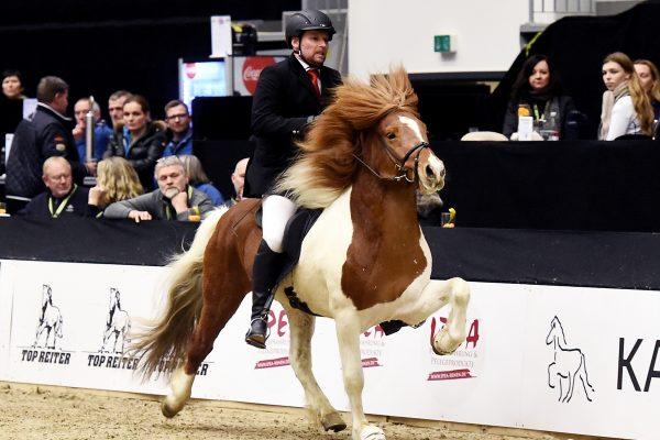 MCK3062 Bogi and Tryggvi 5-gait stallion show 240218