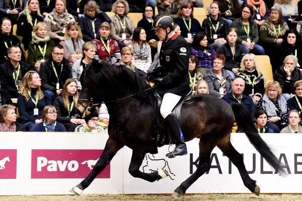 MCK3289 Starri and Uli 5-gait stallion show 240218