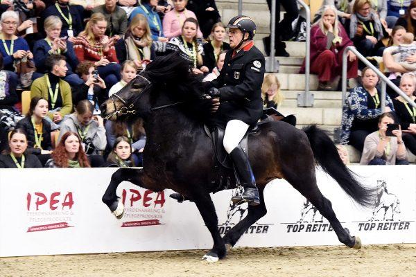 MCK3351 Starri and Uli 5-gait stallion show 240218