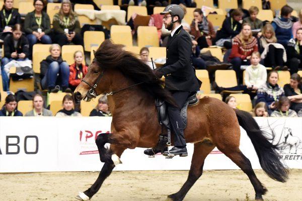 MCK4162 Agnar in Gavnholt show WT240218