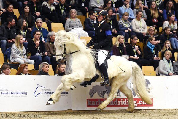 MCK5085 Kjalar and Lisa V1 final 240218
