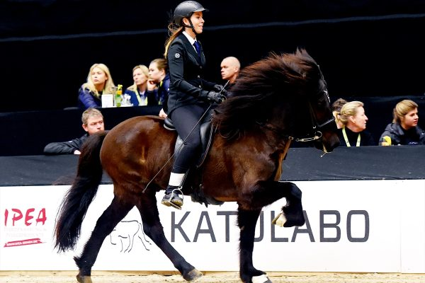 MCK5557 Viktor and Amalie T2 B-final 240218