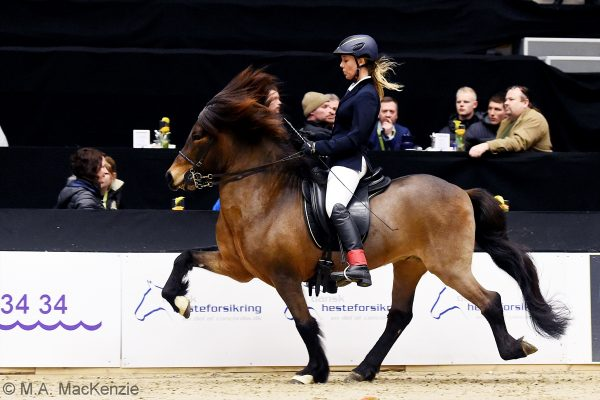 MCK6893 Kavaler and Helena V1 B-final 240218