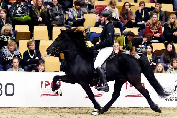 MCK7494 Litli-Dagur and Kirsten in Teland show 240218