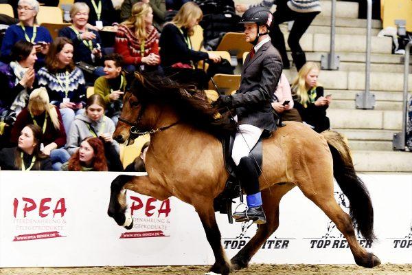 MCK8004 Muni and Dennis 4-gait stallion show 240218