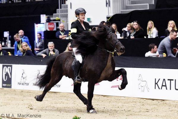 MCK8194 Divar and Julie 5-gait stallion show 240218