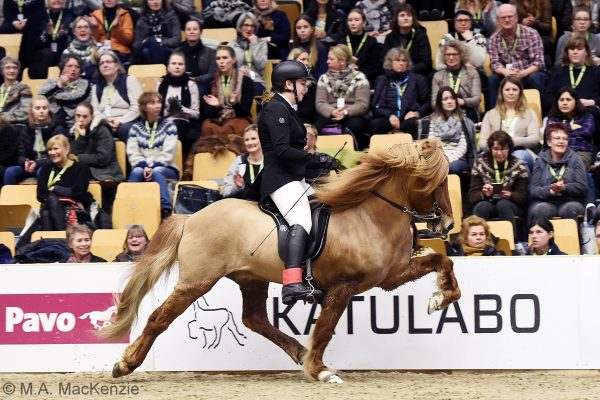 MCK9755 Smári and Katie T1 B-final 240218