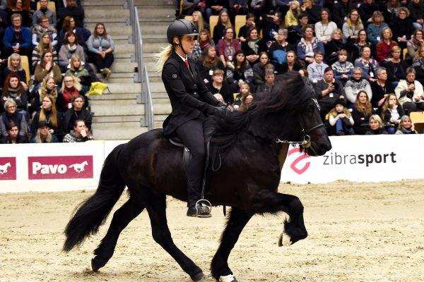 MCK0869 Tinni 230219 Stallion show
