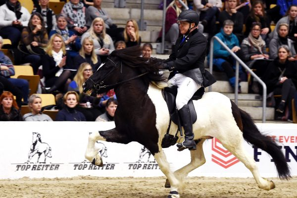 MCK1264 Aron 230219 Stallion show