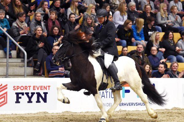 MCK1272 Aron 230219 Stallion show