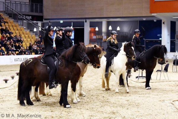 MCK2334 Breeding show Pegasus 230219
