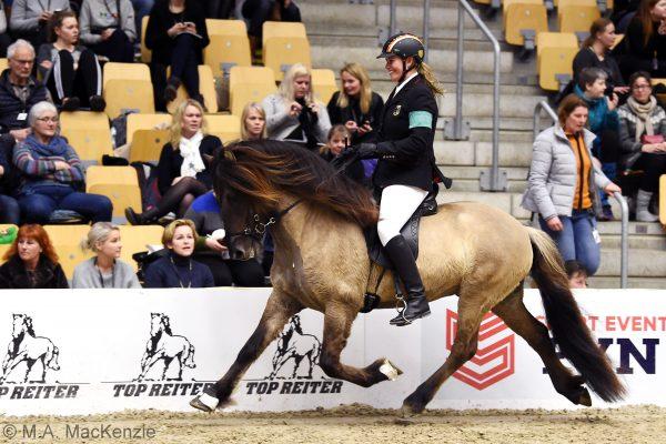 MCK6272 Byr 230219 Stallion show
