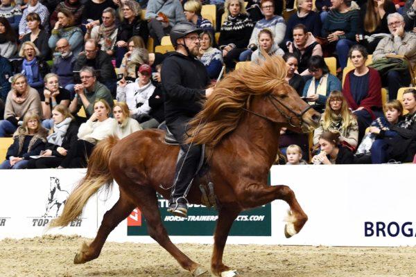 MCK0366 Trúr stallion show 220220