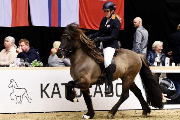 MCK0556 Barón and Christa stallion show 220220