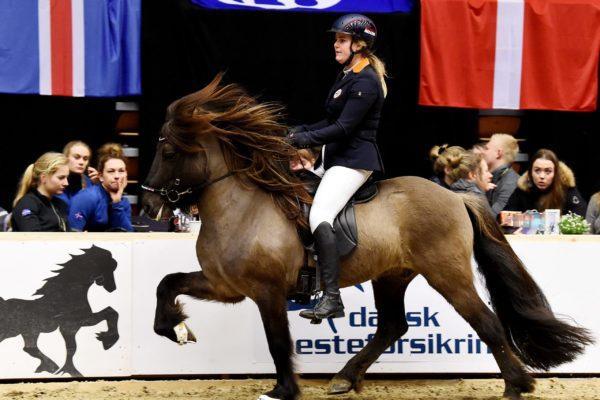 MCK0564 Barón and Christa 220220 stallion show
