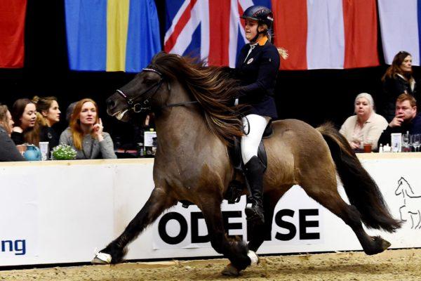 MCK0862 Barón and Christa 220220 stallion show