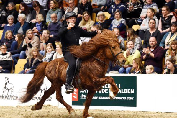 MCK1183 Kraftur stallion show 220220