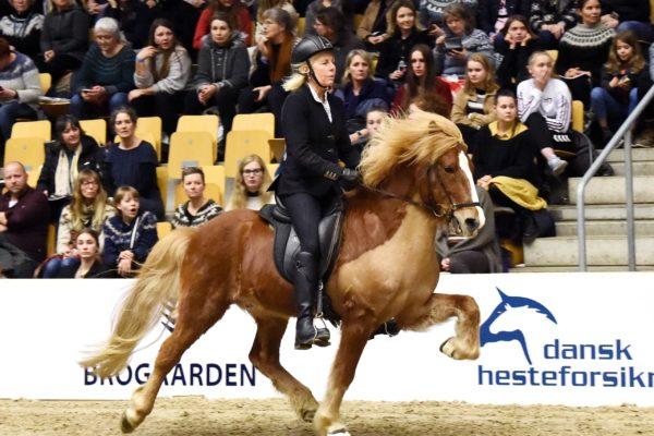 MCK2077 Garri show 220220Kiljan