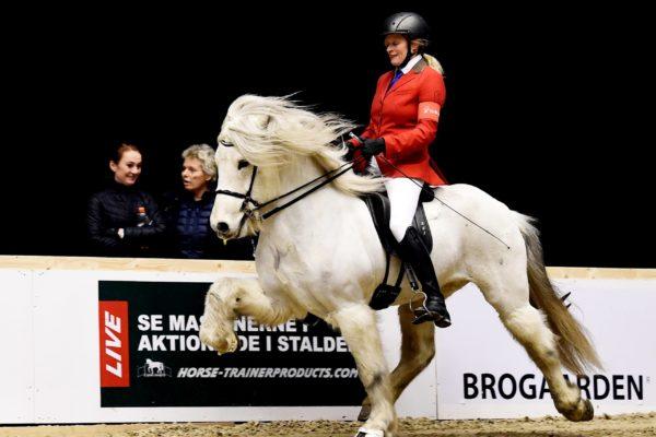 MCK2694 Sjóli and Steffi V1 final 220220