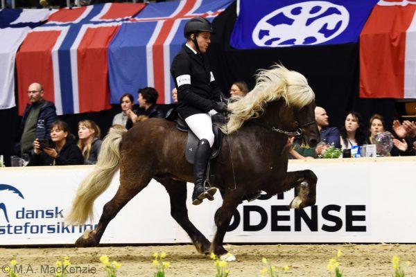 MCK6277 Sólbjartur and Sigurdur T1 final 220220